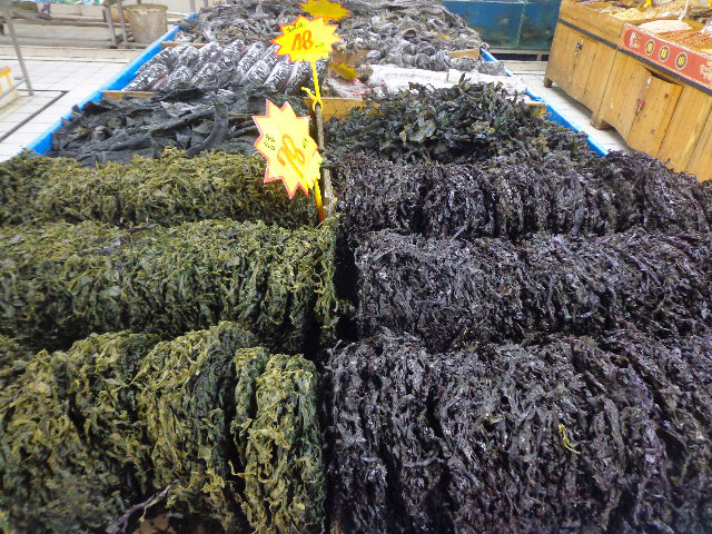 Changsha - Kelp