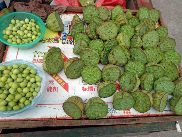 Wuhan - Lotus Pods & Seeds